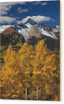 Mountainous Wonders Wood Print