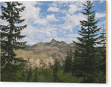 Wood Print featuring the photograph Mountains And Fir Trees by Robert  Moss