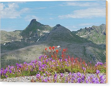 Mountains And Wildflowers Wood Print