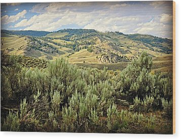 Mountains North Of The Lamar Wood Print by Marty Koch