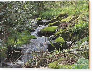 Mountian Cascade Wood Print
