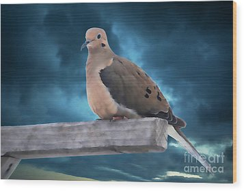 Wood Print featuring the photograph Mourning Dove Blue Sky by Marjorie Imbeau