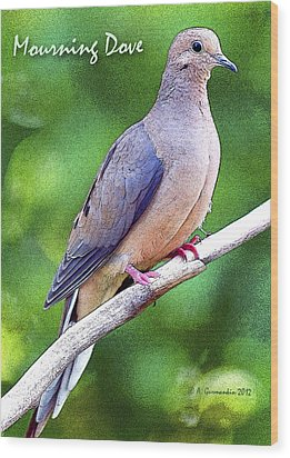 Wood Print featuring the photograph Mourning Dove Digital Art by A Gurmankin