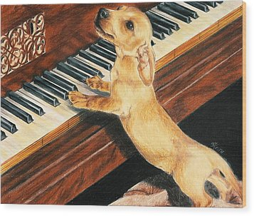 Wood Print featuring the drawing Mozart's Apprentice by Barbara Keith