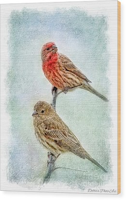 Mr And Mrs House Finch Digital Paint With Frame Wood Print by Debbie Portwood