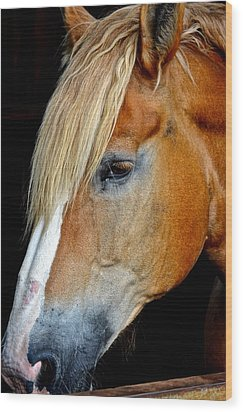 Mr Ed Wood Print by Frozen in Time Fine Art Photography