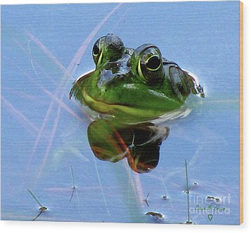 Wood Print featuring the photograph Mr. Frog by Donna Brown
