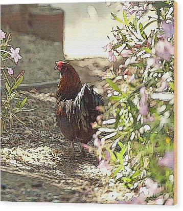 Mr. Rooster Takes A Stroll Wood Print by Artist and Photographer Laura Wrede