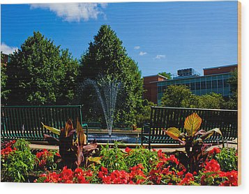Msu Water Fountain Wood Print