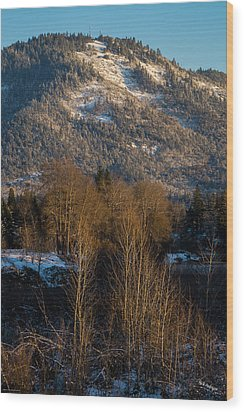 Mt Baldy Near Grants Pass Wood Print by Mick Anderson