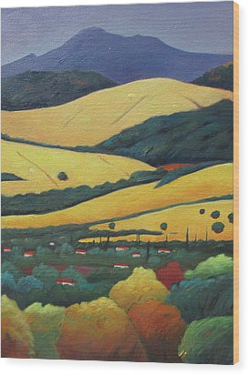 Mt. Diablo In Distance Wood Print by Gary Coleman