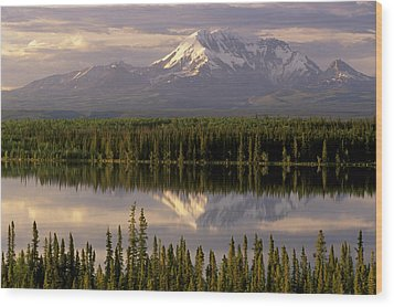 Mt Drum Over Willow Lake Wrangell-st Wood Print by Calvin Hall