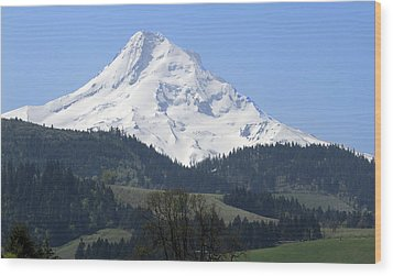 Mt Hood Wood Print by Elvira Butler