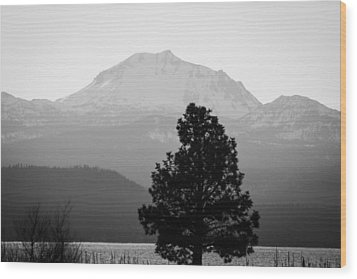 Wood Print featuring the photograph Mt. Lassen With Tree by Jan Davies