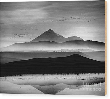 Wood Print featuring the photograph Mt. Shasta by Irina Hays