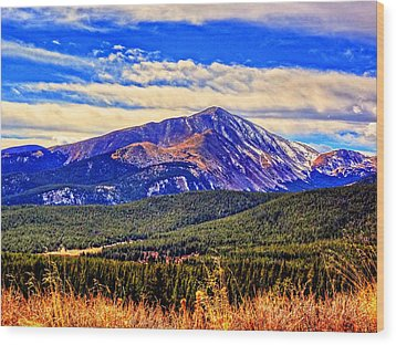 Wood Print featuring the photograph Mt. Silverheels II by Lanita Williams