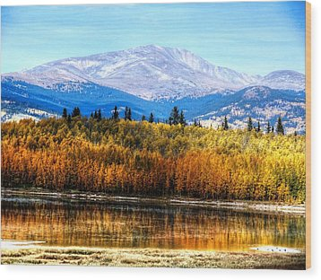 Wood Print featuring the photograph Mt. Silverheels With Aspens by Lanita Williams