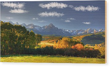 Mt Sneffels And The Dallas Divide Wood Print