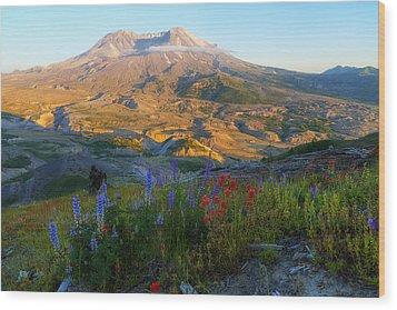 Mt. St. Helens Golden Hour Wood Print