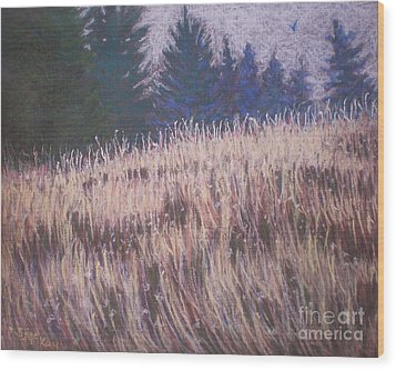 Mt. Tabor Contrasts Wood Print by Suzanne McKay