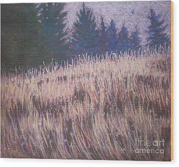 Mt. Tabor Contrasts Wood Print
