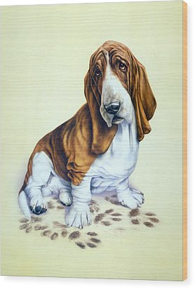 Mucky Pup Wood Print by Andrew Farley