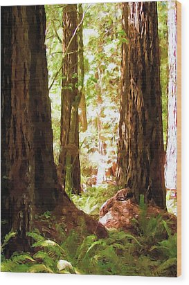 Muir Woods Wood Print