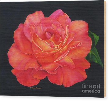 Multi-colored Rose Oils On Canvas - Print Wood Print by Margaret Newcomb