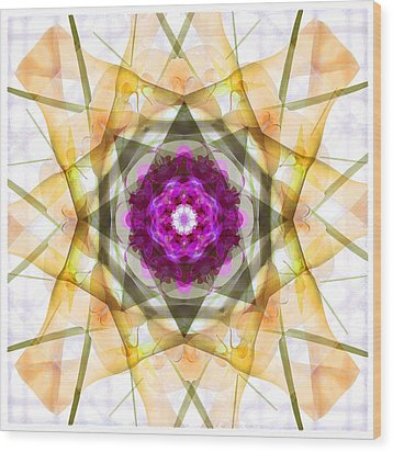 Multi Flower Abstract Wood Print by Mike McGlothlen