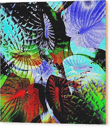 Multi Hosta Wood Print by Stephanie Aarons