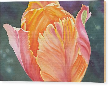 Multicolored Tulip - Transparent Watercolor Wood Print
