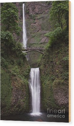 Multnomah Falls Wood Print by Suzanne Luft