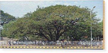 Mumbai India Wood Print by Sophie Vigneault