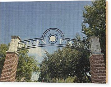 Munn Park Wood Print