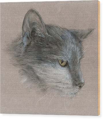Wood Print featuring the drawing Murray The Cat by Penny Collins