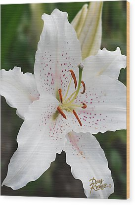 Muscadet Lily Wood Print by Doug Kreuger