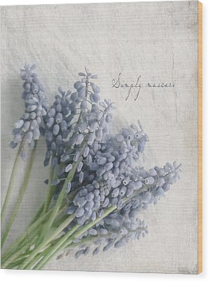 Muscari Wood Print by Beverly Cazzell