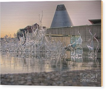 Wood Print featuring the photograph The Museum Of Glass by Chris Anderson