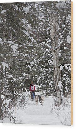 Musher In The Forest Wood Print by Tim Grams