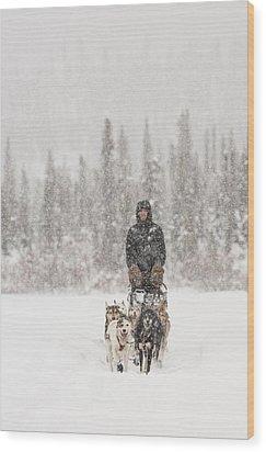 Mushing Through A Snow Storm Wood Print by Tim Grams