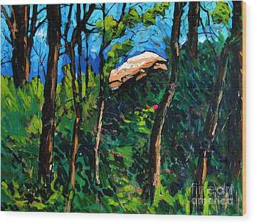Mushrooming At Treaty Rock Wood Print by Charlie Spear