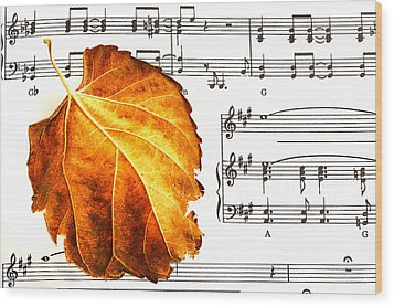 Music In Autumn Wood Print