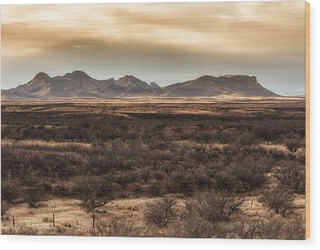 Wood Print featuring the photograph Mustang Mountains by Beverly Parks