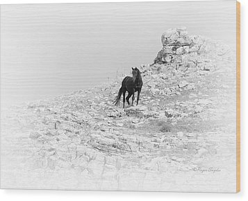 Mustang On Hill 2 Bw Wood Print