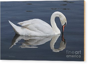 Wood Print featuring the photograph Mute Swan Kissing Its Reflection by Susan Wiedmann