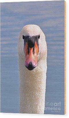 Mute Swan Staring Wood Print by Susan Wiedmann