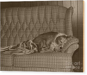 My Dog Sleeping On The Couch Circa 1976 Wood Print by ImagesAsArt Photos And Graphics