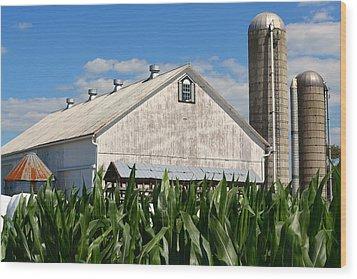 My Favorite Barn In Summer Wood Print