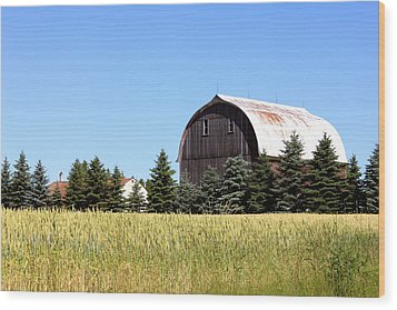My Favorite Barn Wood Print by Sheryl Burns