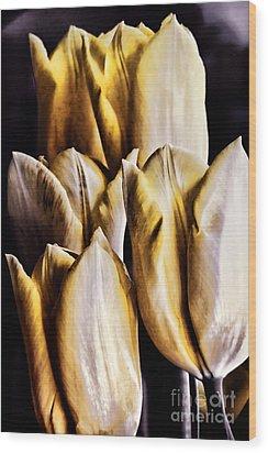 My Favorite Tulips Wood Print by Mariola Bitner